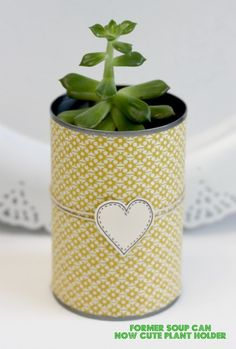 Soup can planter with decorative scrapbook paper.