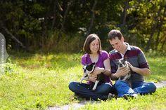 Isidore and Fleurette the boston terriers photographed by Ottawa Dog Photographer, Liz Bradley of elizabeth&jane photography