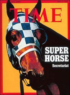Super Horse!