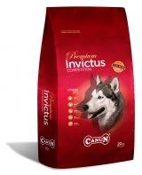 PIENSOS CANUN CAZA   |    Ya esta aquí la temporada de caza. Disponemos de alimentación de alta energía de la acreditada marca en perros de caza Piensos Canun. Que tu perro cace a pleno rendimiento sin excusas. Canun Brio Plus 20 Kg, 4850 kcal/kg,(32% proteína-26% grasa) 49€Canun Invictus 20 kg (32% proteína-20% grasa)...  |  http://www.anunciocaza.com/ad/piensos-canun-caza/