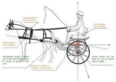 horse carriages, Animal Sports International, Inc Atlanta, GA Vehicle Height Mini Horse Barn, Miniature Ponies, Horse Cart, Horse Harness, Horse Exercises, Horse Carriage, Celebrity Drawings, Horse Drawings, Draft Horses