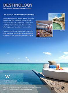 Advert for W Hotels Maldives Creative Design, Web Design, Design Ideas, Maldives Holidays, W Hotel, Marine Life, Villa, Spa, Ocean