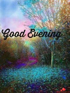 Evening Greetings, Good Night Greetings, Good Night Wishes, Good Night Quotes, Good Night I Love You, Good Night Image, Good Morning Good Night, Morning Wish, Good Evening Wallpaper