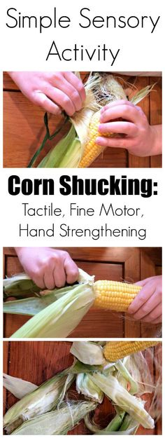 A Simple (but Complex) Sensory Activity: Fine Motor, Tactile & Hand Strengthening. The corn could also be prepared as a Practical Life Experience. Farm Activities, Nature Activities, Autumn Activities, Preschool Activities, Therapy Activities, Children Activities, Summer Activities, Wild West Activities, Harvest Activities