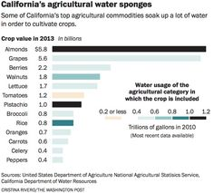 California's Agricultural Water Sponges
