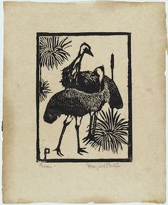 Margaret Preston - Emus Australian Birds, Australian Artists, Margaret Preston, Linocut Prints, Art Prints, Kunst Der Aborigines, Black And White Prints, Botanical Drawings, Aboriginal Art