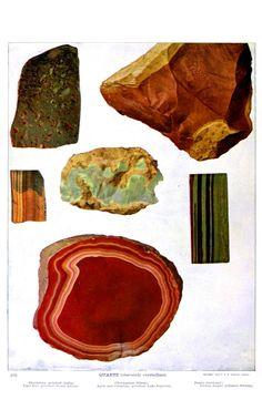 Gems and gem minerals (1903). Oliver C. Farrington. (via @JealousCurator)