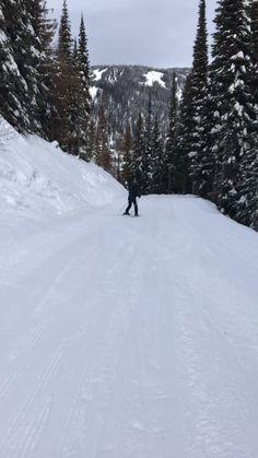 Photo Ski, Nature Pictures, Cool Pictures, Winter Girl, Snowboarding Style, Snow Activities, Winter Scenery, Cross Country Skiing, Snow Skiing