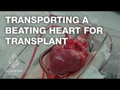 Transporting a beating heart for transplant - TechKnow - YouTube