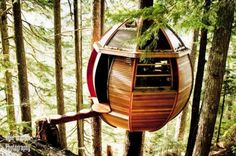 the wooden suspended tree house