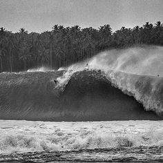Barbados Surfing conditions are ideal for any level of surfer. Barbados is almost guaranteed to have surf somewhere on any given day of the year. Kitesurfing, Skate, Yoga Sport, Vintage Surf, Sup Surf, Water Photography, Surf Art, Big Waves, Surfs Up