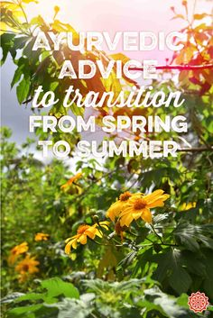 Ayurvedic Advice to transition from Spring to Summer
