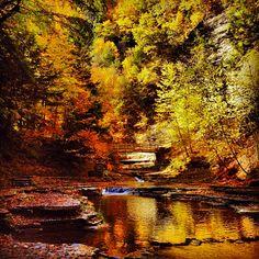 Stony Brook State Park ---Soul-Flower Blog