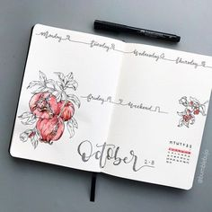 Nice drawings in this weekly set up #bulletjournal #bujo
