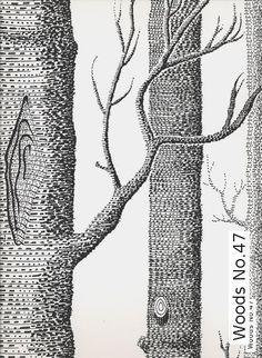 Tapete: Woods No.47 - Die TapetenAgentur