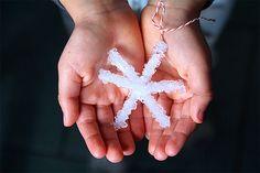 DIY Crystal Snowflakes for Kids