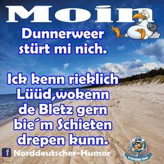 #Tshirt #Hoodie #Shirt #Pullover #Fussmatte #Norddeutsch  #Platt #Plattdeutsch #Ostsee #Nordsee #Schleswigholstein #Watt #Strand #Meer #Schiffe German, Cool Stuff, Pictures, Humor Deutsch, Idioms, Deutsch, Photos, German Language, Grimm