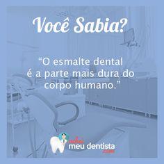 O esmalte dental é o tecido mais duro e mineralizado de todo o corpo humano, mas pode ser danificado se os dentes não forem higienizados adequadamente.
