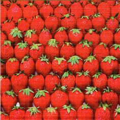 Strawberries BLOTTER ART - perforated acid art paper - Kesey Leary Hofmann Owsley Grateful Dead psychedelic lsd sheet tabs