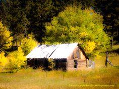 Cabin Rams Horn