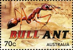 Stamp: Bull Ant (Mymecia sp.) (Australia) (Things that sting) Mi:AU 4188,Sg:AU 4244,WAD:AU 081.14