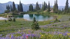 5. Naches Peak Loop Trail
