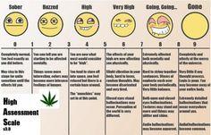 Funny Marijuana   funny-weed-quotes-marijuana