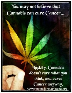 Cannabis doesn't care!!!