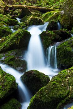 Mountain Stream And Moss. Royalty free stock photos. All pictures are free for commercial and personal use. http://www.publicdomainpictures.net
