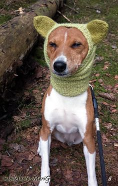 Ravelry: MariG-Nora's Sunny´s hoodie this is too cute