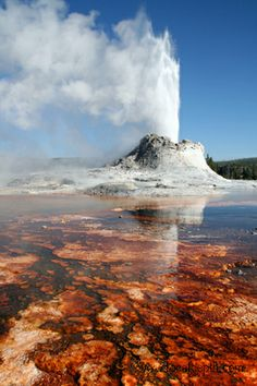I need to go to Yellowstone. Definitely up there, probably my number 1 place I want to go in America atm. See loads of Bison, immense landscapes and who knows, a wolf or a bear? That'd be cool beyond words.