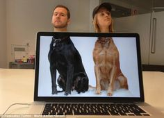Funny Photos of Coworkers Aligned with Animal Bodies - My Modern Met Desk Safari is a funny photo project started by Mike Whiteside, one half of the creative duo Mike & Ben, that cleverly places laptops and tablets with Best Friend Pictures, Friend Photos, Cool Pictures, Cool Photos, Sports Pictures, Funny Pics, Funny Friend Pictures, Forced Perspective Photography, Perspective Photos