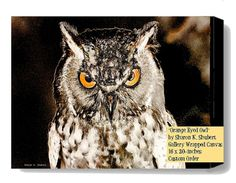 Great Horned Owl Art Giclee Print on CANVAS by GrayWolfGallery, $185.00