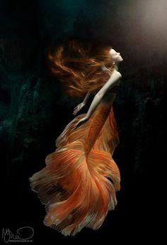 69 Ideas photography model water fantasy for Titanic Underwater, Underwater Art, Underwater Quotes, Underwater Crafts, Underwater Tattoo, Underwater Pictures, Fantasy Creatures, Mythical Creatures, Sea Creatures