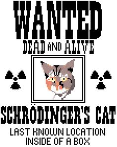 Schrodinger's Cat Counted Cross Stitch Pattern PDF by robinsdesign, $5.00