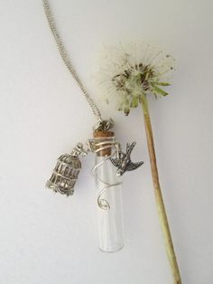 Caged bird and free flying bird charm glass vial necklace 14 euro - Creative Connections