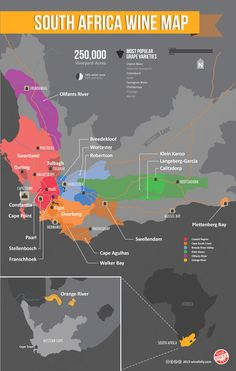 "South African Wine Map #wineeducation www.LiquorList.com ""The Marketplace for Adults with Taste!"" @LiquorListcom   #LiquorList"
