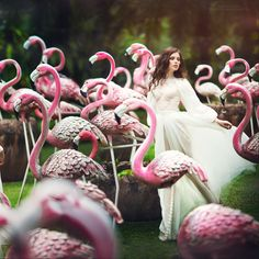 pink mist by Margarita Kareva on 500px