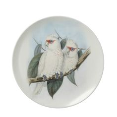 Vintage Decorative Plate Stunning vintage illustration of a pair of Long Billed Cockatoos. The white cockatoos have red masks and ...