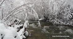 El río ha recuperado en días el nivel normal de la época