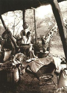 Peter Beard working at his bush camp in Kenya. #kenya #peterbeard