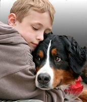 Bernese Advance Directive