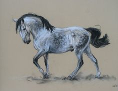 $45.00 SALE Original soft pastel and charcoal movement equine horse painting sketch Presence by H Irvine Dimensions are 18 x 14 image size on roughly 22 x 18 paper.