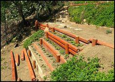 terraced hillside veggie garden. perfect use of my backyard hill