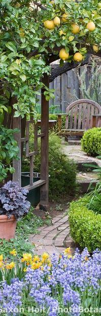 Secret garden ~