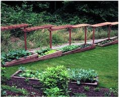 Raised Garden bed on a slope  Another way to add definition between us and neighbor's yard.  (upper pergola)