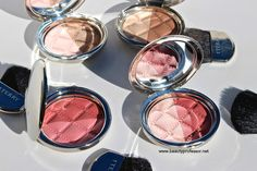 Beauty Professor: By Terry Densiliss Compact Contouring and Blush Co...
