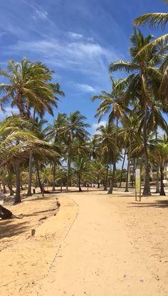 Praia Selvagem, Costa do Sauípe, Bahia, Brasil