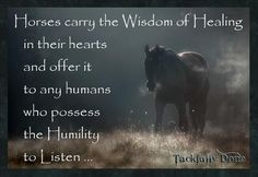 """""""Horses carry the Wisdom of Healing in their hearts and offer it to any humans who possess the Humility to Listen .... """""""
