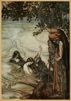 Arthur Rackham, Fantasy Creatures, Mythical Creatures, Water Nymphs, Octopus Art, Conte, Artist Art, Drawing Sketches, Find Art